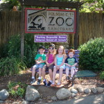 The Folsom City Zoo Sanctuary
