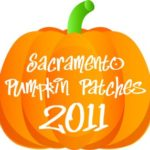 Sacramento Pumpkin Patch Guide