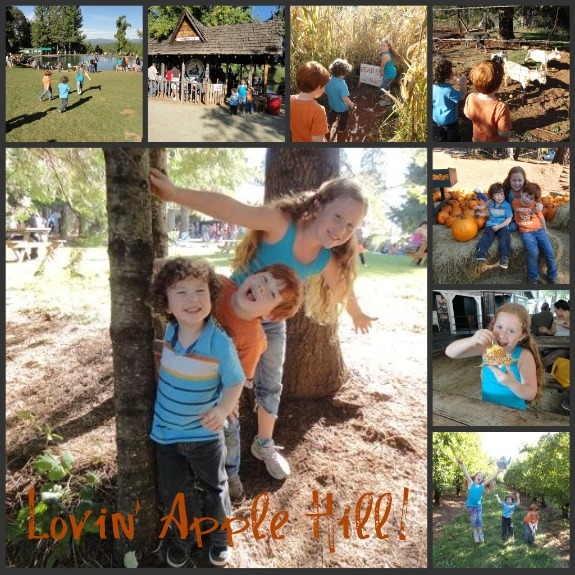 applehillcollage1