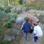 Exploring WPA Rock Garden