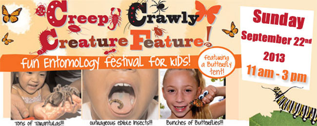 Creepy! Zany entomology expo for kids features hundreds of bugs