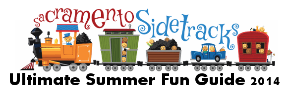 Summer Fun Guide 2014 Logo
