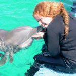 We Swam With Dolphins!